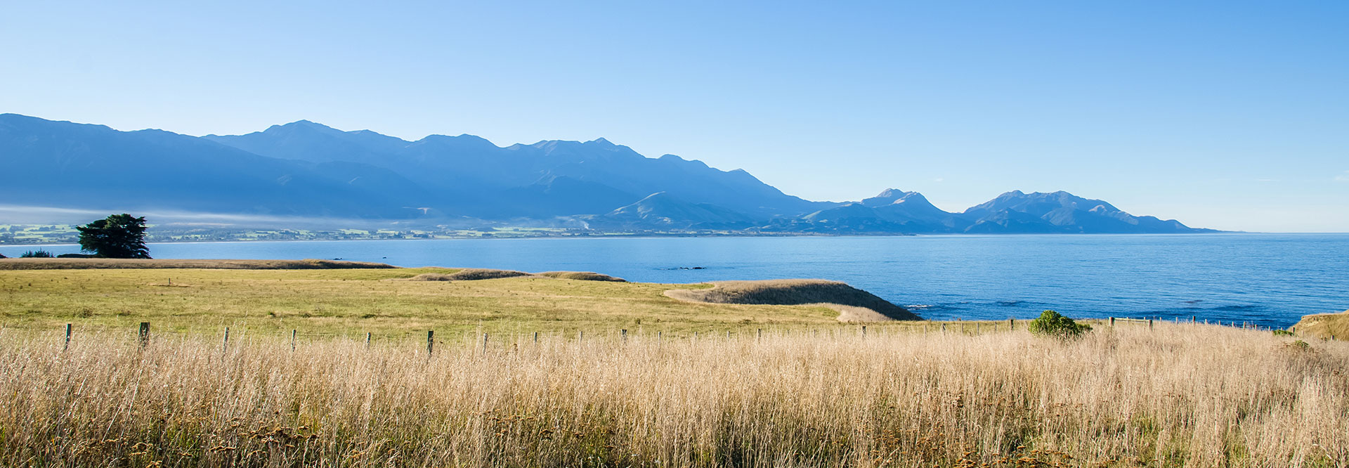 Kaikoura – The perfect spot to work, rest and play!